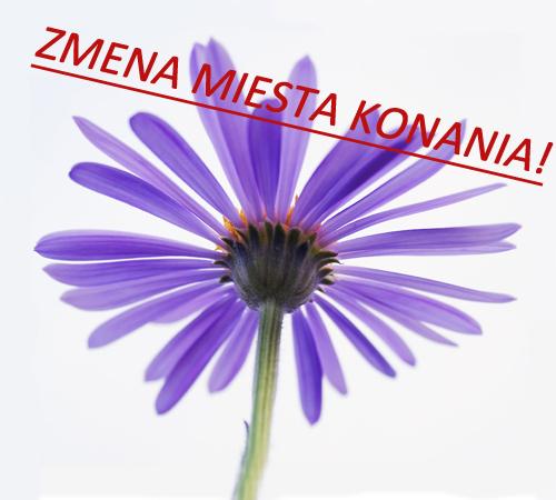 kvetinka_small1